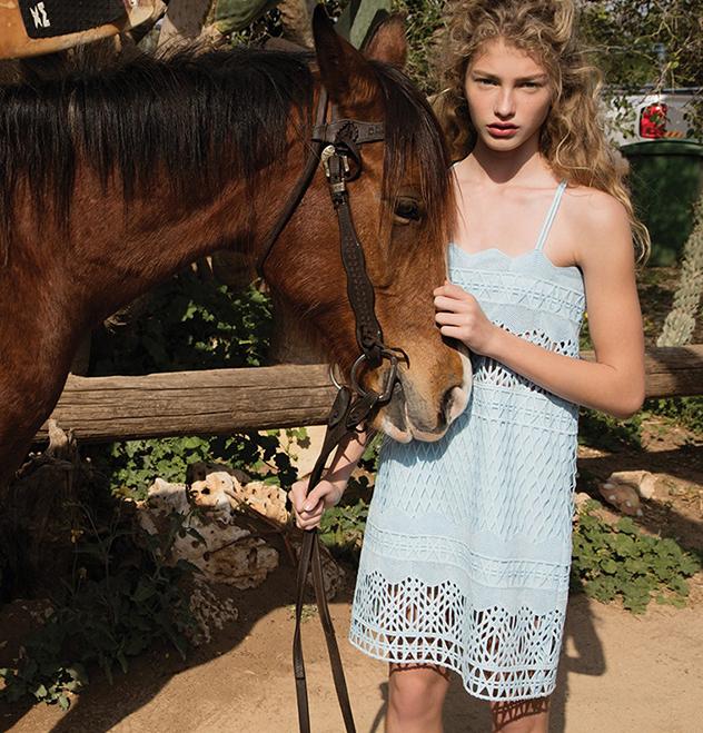 הסוס לא כלול. אלון ליבנה X לילמיסט (צילום: יניב אדרי)