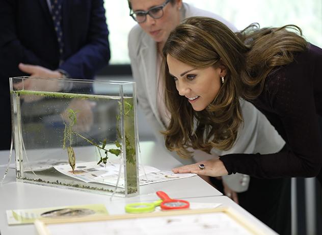 לכל המטיילים במוזיאון הטבע בלונדון, שימו לב אולי יש נסיכה ממש לידכם (צילום: Kirsty Wigglesworth  לגטי אימג'ס)