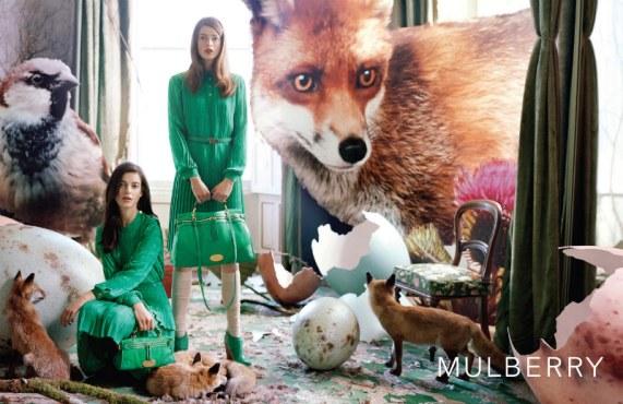 קמפיין חורף 2012 מולברי